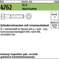 ISO 4762 10.9 M 10 x 40 flZn/nc/TL/x/480h/C flZn VE=S (100 Stück)