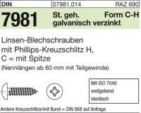 Blechschrauben C4,8x25-H