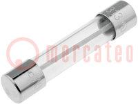 Sicherung: Schmelz; träge; aus Glas; 100mA; 250VAC; 6,3x32mm; 313