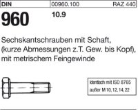 DIN960 M10x1,25x60