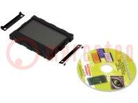 Display: LCD; grafisch; FSTN Positive; 128x64; zwart; LED; PIN:32
