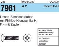 Blechschrauben 3,9x13-F-H