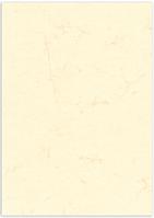 100 Blatt Dokumentenpapier (Elefantenhautpapier), 190g/m², weiß, DIN A4
