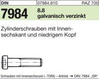 DIN7984 M8 x 100|mm