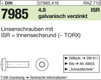 Linsenschrauben M6x30-T30