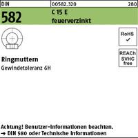 DIN 582 C15E M 10 feuerverzinkt tZn S